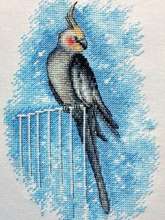 Схема вышивки «Важная птица»