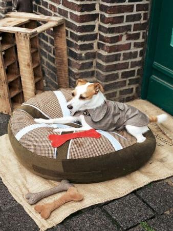 Попонка для собаки