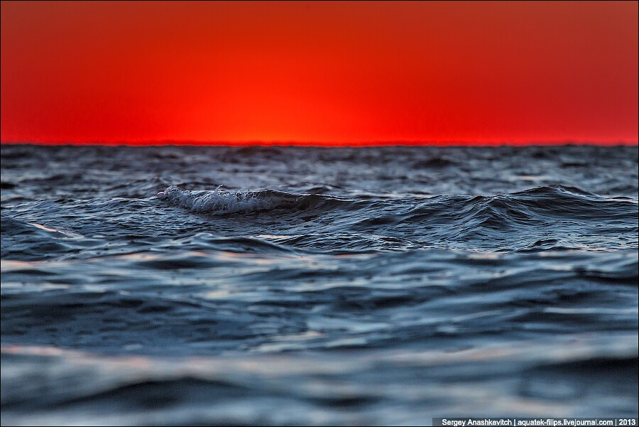 «Когда море поглощает солнце» (С) от kataplazma7