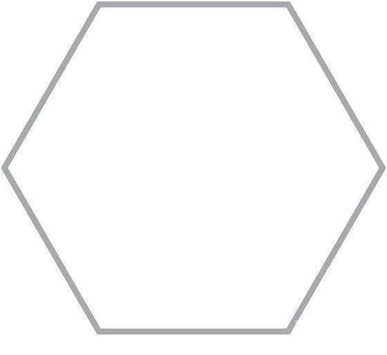 Строгая геометрия