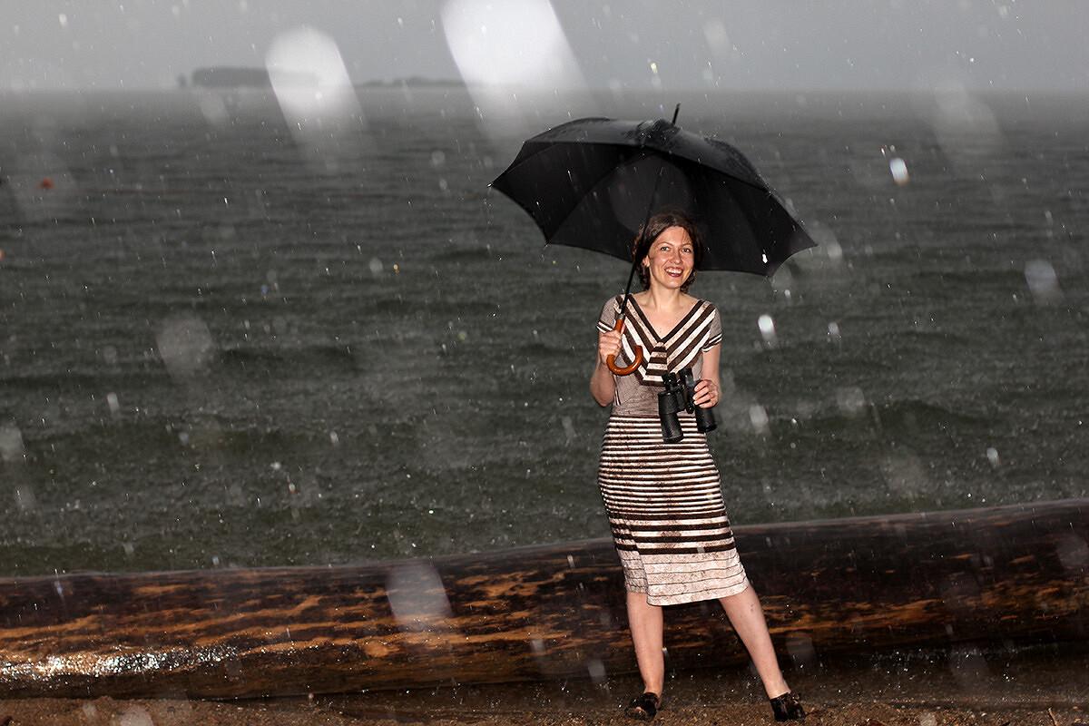 Кажется, дождь собирается от Брусника