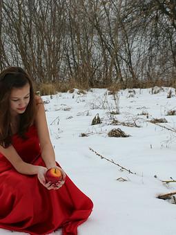 Работа с названием Яблоко на снегу или зимняя фотосессия