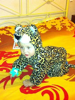 Работа с названием мой любимый леопард