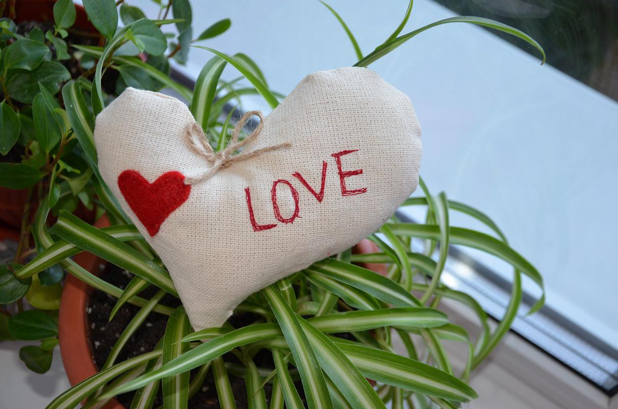 Ко Дню Святого Валентина готова))) от Мевгения
