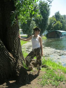 Работа с названием тропики)