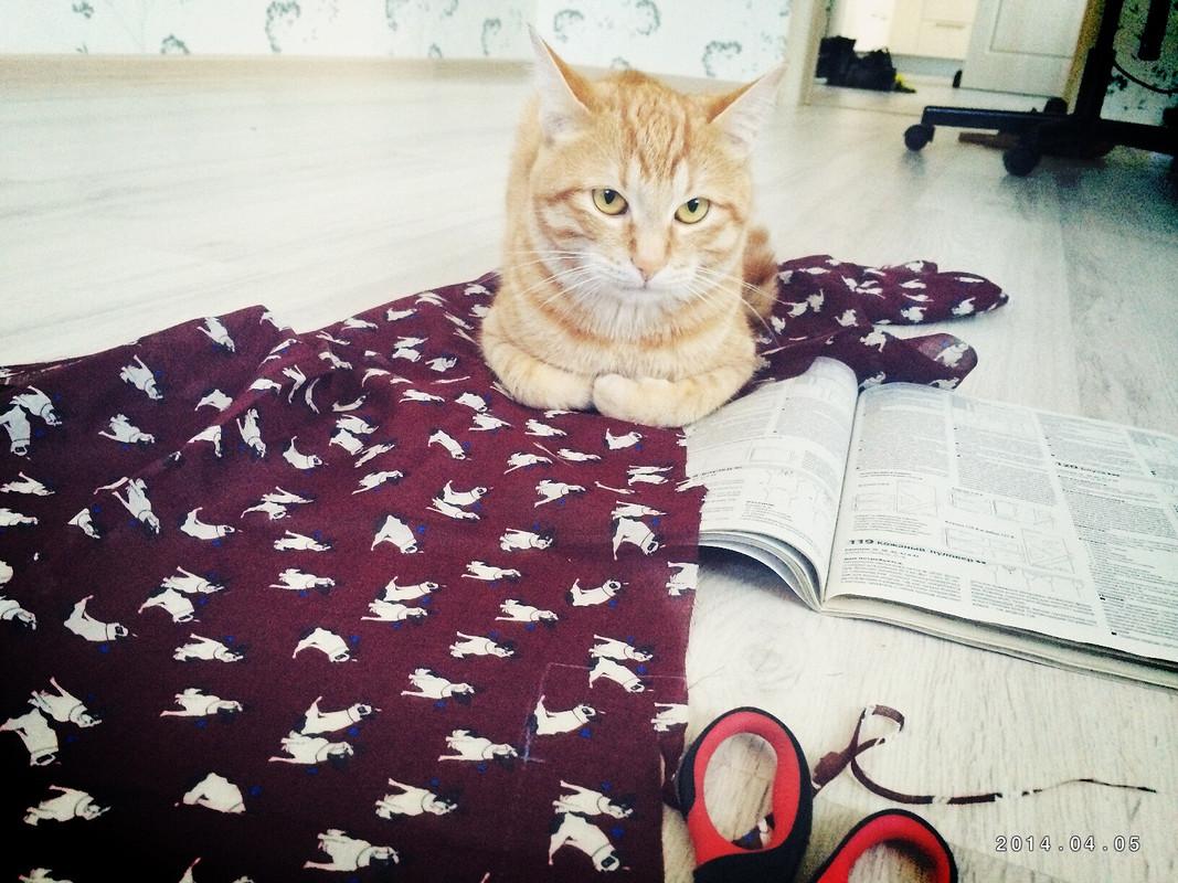 Блузка ссобаками