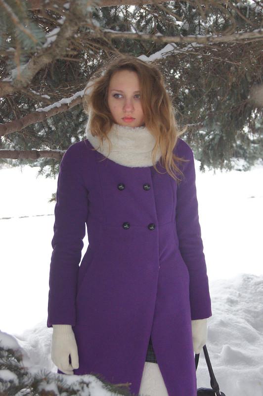 Зима смечтою оПетербурге