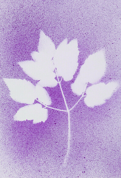 Картины осени— смена цветов иформ