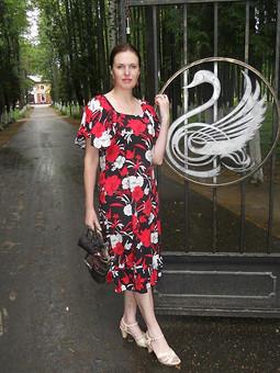 Работа с названием Платье с крылышками