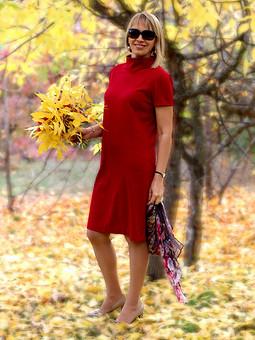 Работа с названием Это красное платье