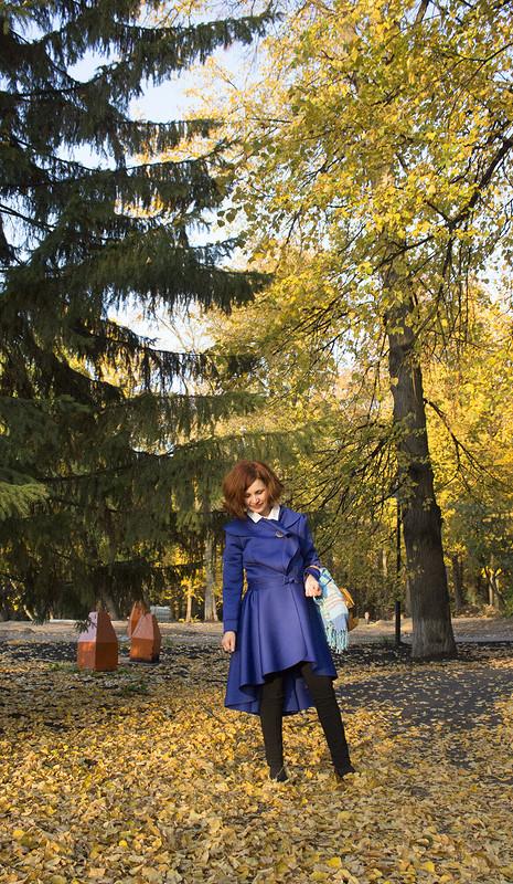 Осенний марафон .Яркие краски) от kattarika