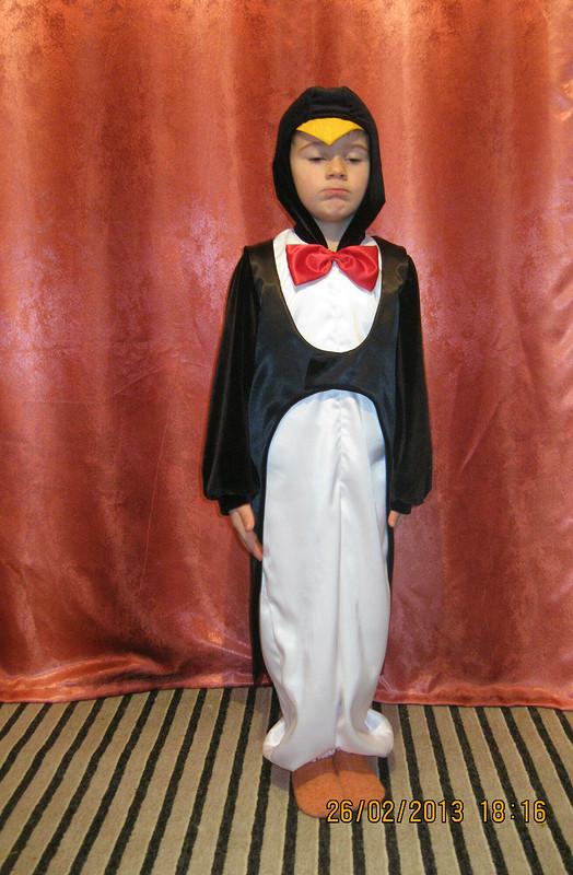 Пингвины бывают разные