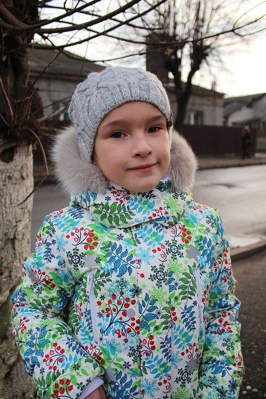 Рябина наснегу от zhuk_kate