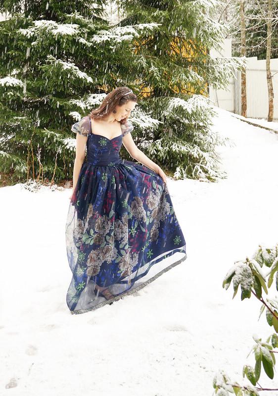 Снежное сари
