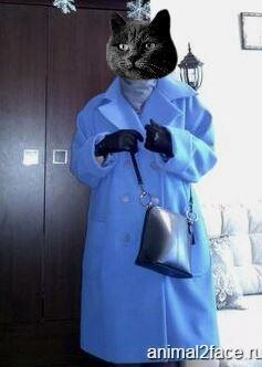 Пальто от verenika