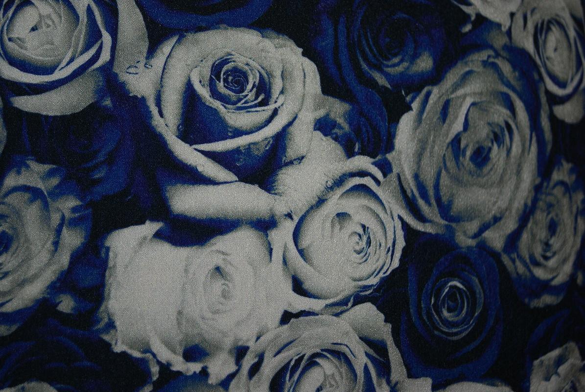 Сказочные розы