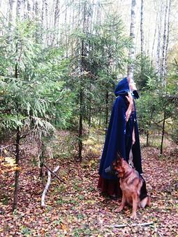 Работа с названием Прогулка в  лесу