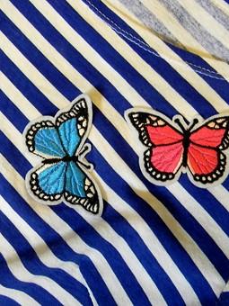 Работа с названием Этим летом я матрос в бабочках!
