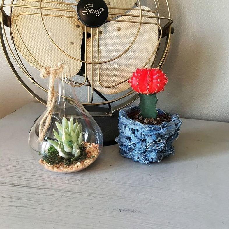 Необычное оформление домашних растений: 12 идей синструкциями