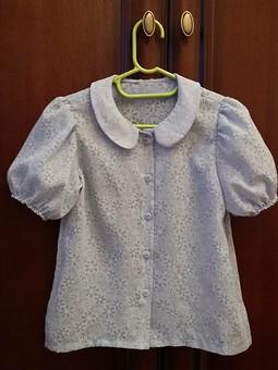 Работа с названием Голубая блузка
