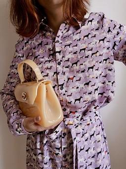Работа с названием Собачье платье
