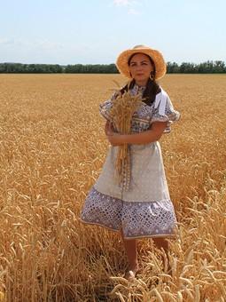 Работа с названием Пшеничные поля