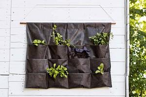 Идея: вертикальный органайзер для выращивания зелени