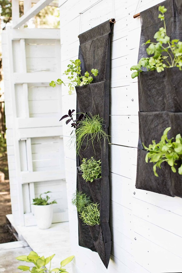 Идея: вертикальный органайзер длявыращивания зелени