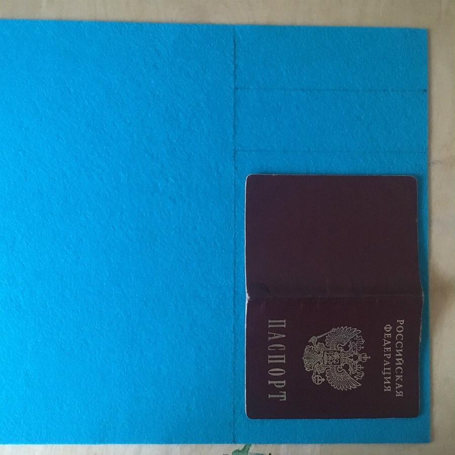 Простая обложка дляпаспорта изфетра: мастер-класс