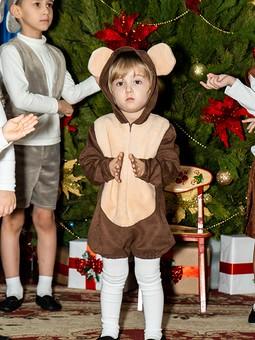 Работа с названием Новогодний костюм медведя