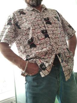 Работа с названием Котогавайская рубашка