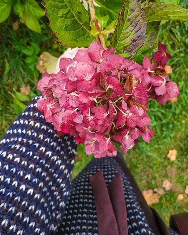 Осенний кардиган