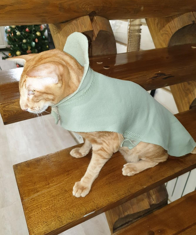 Зимний костюм: юбка ипуловер
