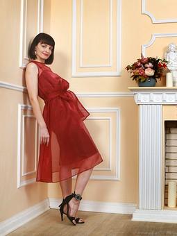 Работа с названием Одно платье - три образа