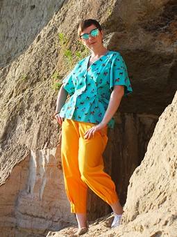 Работа с названием Блуза с собаками и абрикосовые слоучи