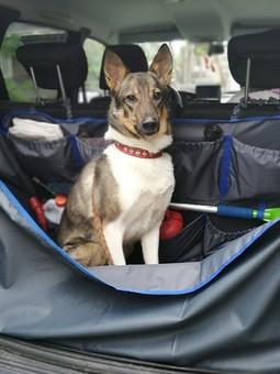 Работа с названием Накидка-органайзер в багажник
