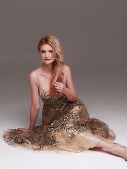 Работа с названием Золотое корсетное платье