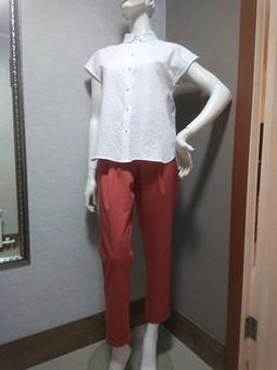 Работа с названием Блуза и брюки