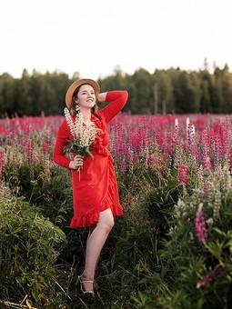 Работа с названием Красное платье в горошек