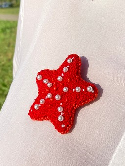 Работа с названием Брошь «Морская звезда»