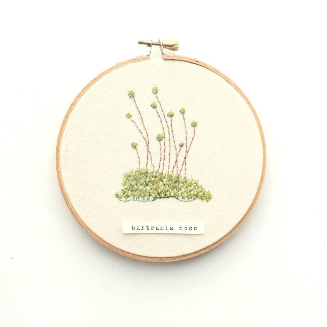 Ботаническая вышивка отхудожницы изКолорадо: Instagram недели