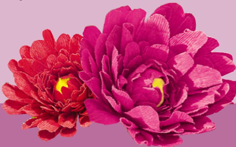 Цветы из бумаги на 8 марта, г. вологда оптовые базы цветов
